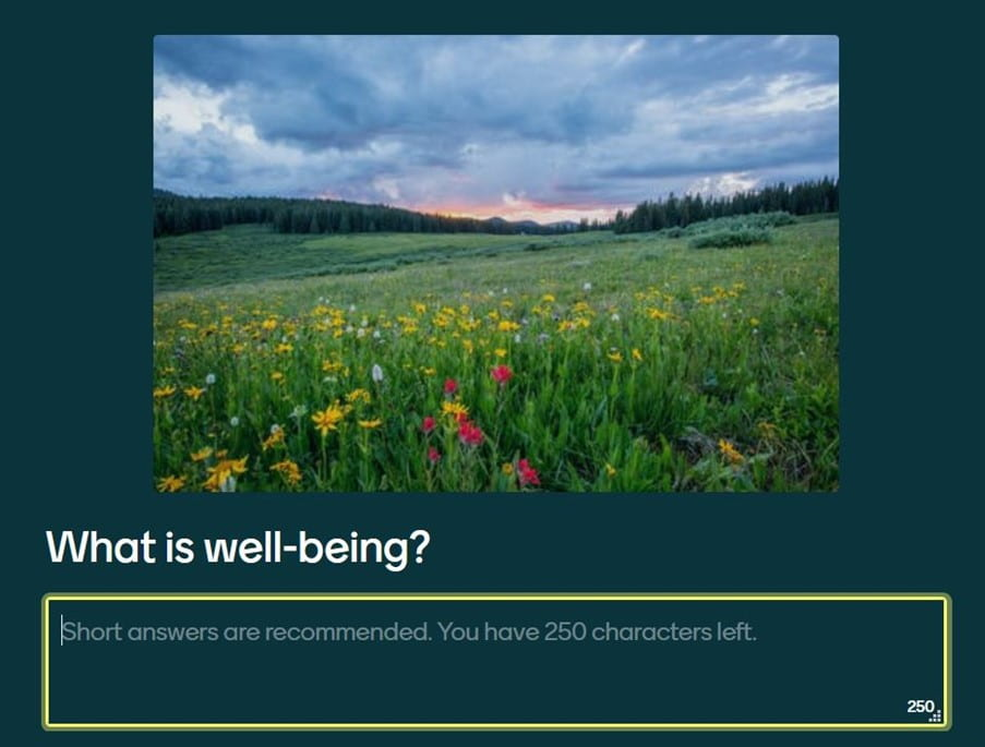 a screenshot of one of the Mentimeter questions from session one that features a picture of a field of wildflowers and underneath that the question 'What is well-being?' followed by a free-form text box for participants to enter their responses. These were then discussed by presenters and used to frame the next part of the presentation